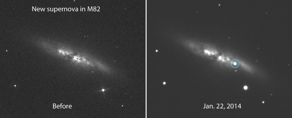 Supernova i M82 Foto: E. Guido, N. Howes, M. Nicolini